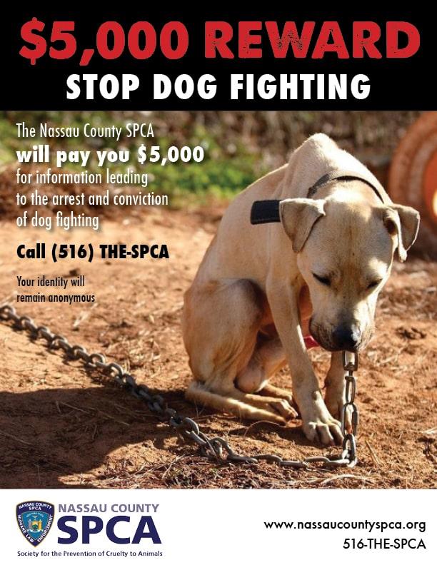 82e5ffeae8 Nassau County Society for Prevention of Cruelty to Animals – Nassau ...